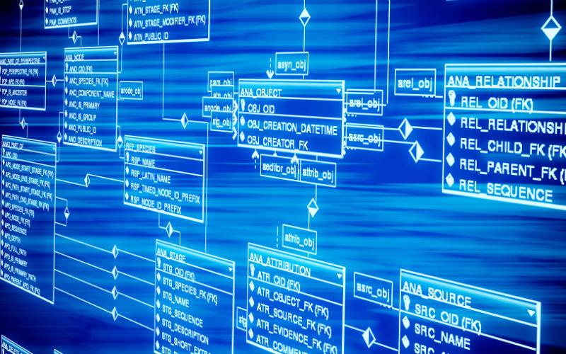 Sosialisasi dan Pelatihan Online Database